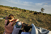 Children on a safari jeep watching elephants, Udawalawe National Park, Sri Lanka