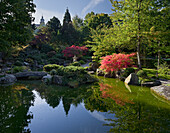 Japanese garden with pond, Marienberg fortress, Wuerzburg, Bavaria, Germany