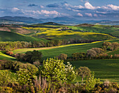 View over the Orcia valley near San Quirico DOrcia, Tuscany, Italy