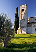 Abtei Sant Antimo mit Zypresse und Olivenbaum, Castelnuovo Dellabate, Toskana, Italien