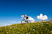 Female mountain biker passing an alpine meadow, Duisitzkar, Planai, Styria, Austria