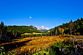 Autumn scenery with Admonter Kalbling in background, Kaiserau, Styria, Austria