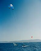 CROATIA, Bol, Brac, Dalmatian Coast, kite surfers along Zlatni Rat Beach.