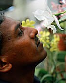 SRI LANKA, Asia, close-up of a man enjoying the fragrance of a Orchid flower at Botanical garden