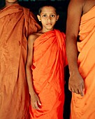 SRI LANKA, Asia, portrait of a young monk at the Pidurangala Temple.