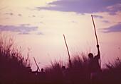 BOTSWANA, Africa, Okavango Delta, Traveling on the Okavango River in Dugout Canoes