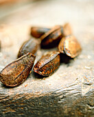BRAZIL, Belem, South America, brazil nuts, close-up