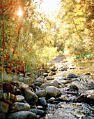 USA, California, Salmon River flowing over rocks, Forks of Salmon