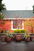 USA, California, Sonoma, the exterior of a cottage at Les Petit Maisons guest cottages and Market