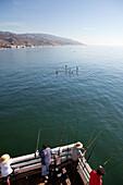 USA, California, Malibu, men fish off of the Malibu pier while four paddleboarders pass by on calm seas
