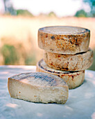 USA, California, Petaluma, a stack of Impromptu Goat's milk cheese at Volpi Ranch, Andante Dairy