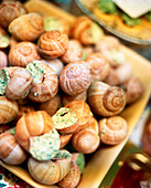 FRANCE, Noyers, Burgundy, close-up of escargots in a small market