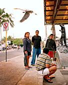 ECUADOR, Galapagos Islands, people and flying bird at a local fish market, Santa Cruz Island