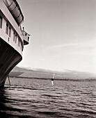 ECUADOR, Galapagos Islands, man diving off boat into the Pacific Ocean (B&W)
