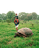 ECUADOR, Galapagos, Santa Cruz Island, father and son observing a giant tortoise in the highlands