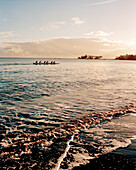 USA, Hawaii, Hilo, a team paddling an outrigger canoe in the Pacific Ocean