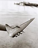 HONDURAS, Roatan, person holding shark fin in hand (B&W)