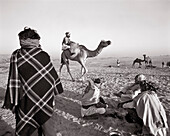 INDIA, Rajasthan, the sale of a camel, Pushkar Camel Fair (B&W)