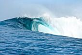 INDONESIA, Mentawai Islands, Kandui Surf Resort, wave breaking in the Indian Ocean, Bankvaults