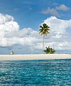 INDONESIA, Mentawai Islands, Kandui Resort, man walking with surfboard on a small island with a palm tree