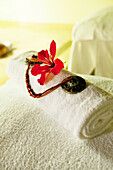 MAURITIUS, Chemin Grenier, South Coast, detail of the spa at Hotel Shanti Maurice, Hibiscus flower