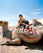 MONGOLIA, Nemegt Basin, a boy and his camel take a rest, the Gobi desert