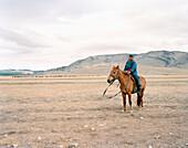 MONGOLIA, Khuvsgul National Park, a young boy shepherd tends to his livestock