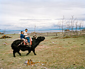 MONGOLIA, Batkhuu's home near Khuvsgul Lake, portrait of two boys riding a yak, Khuvsgul National Park