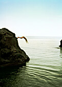 REPUBLIC OF GEORGIA, person diving from the rocks into the Black Sea