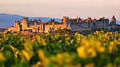 Sunset above the fortified town of Carcassonne on a hill high above Aude in Southern France, Languedoc-Roussillon, France