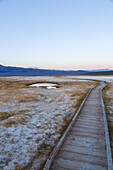 Wooden boardwalk through the salt desert, Whitmore Hot Springs, Wild Willy's Hot Top, Mammoth Lakes, California, USA