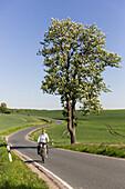 Woman cycling along a road, Uckermark, Brandenburg, Germany