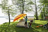 Father and son putting up a tent, Lychen, Uckermark Lakes Nature Park, Uckermark, Brandenburg, Germany