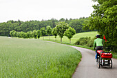 Cyclist with child transporter riding along a road, nera lake Tollensesee, Mecklenburg-Western Pomerania, Germany