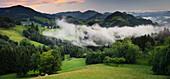 Blick ins Alpenvorland bei Maria Neustift, Wolken, Weide, Oberösterreich, Österreich