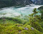 Almsee, Almtal, Northern Limestone Alps, Upper Austria, Austria