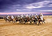 Fantasia  International Festival of the Sahara  Douz  Southern Tunisia.