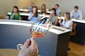 Wine Tasting, Olarra winery, Rioja, Logroño, Spain