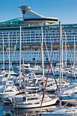 France, Corsica, Corse-du-Sud Department, Corsica West Coast Region, Ajaccio, cruiseship