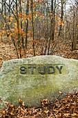 USA, Massachusetts, Gloucester, Dogtown rocks with inspirational words, Study