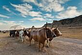 USA, Nebraska, Scottsbluff, Scotts Bluff National Monument and pioneer wagon train