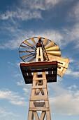 USA, Oklahoma, Elk City, vintage farm windmills, sunset