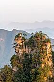 China, Hunan Province, Zhangjiajie National Forest UNESCO World Heritage Site, Tianzi Mountains, morning