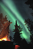 Campfire and Northern Lights, Yukon