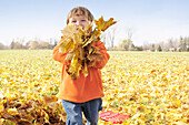 Young Boy Playing in Autumn Leaves, Aurora, Ontario