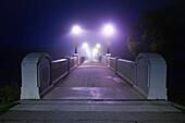 Assiniboine Park Footbridge crossing Assiniboine River on foggy fall morning, Winnipeg, Manitoba
