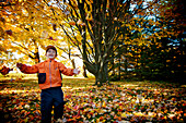 Boy throwing Autumn Leaves in the air, Maricourt, Quebec