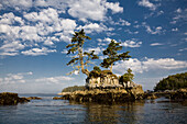 An Islet in the McMullin Group, Great Bear Rainforest, British Columbia Coast