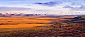 Arctic Circle, fall colours and Richardson Mountains along Dempster Highway, Yukon