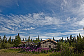 The old homestead at Silver City along the shores of Kluane Lake, Yukon, Canada